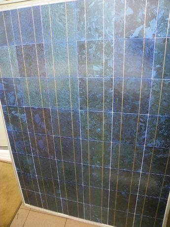 Panel słoneczny, solarny, fotowoltaiczny 165W polikrystaliczny