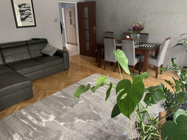 Mieszkanie 60,5 m2 widok