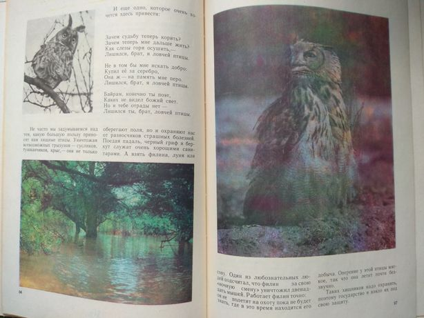 Красота солнечного края записки охотника натуралиста Ашхабад 1979г