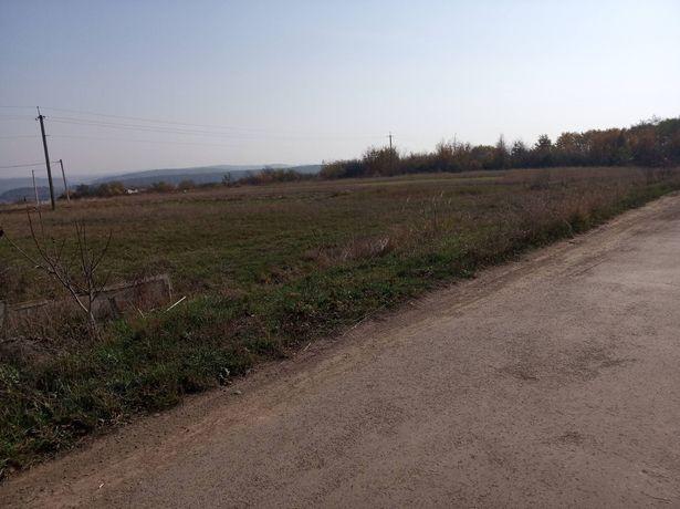 Продається земельна ділянка в с.Колодіївка