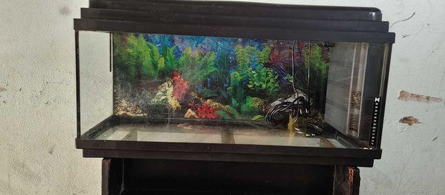 Aquario com acessorios