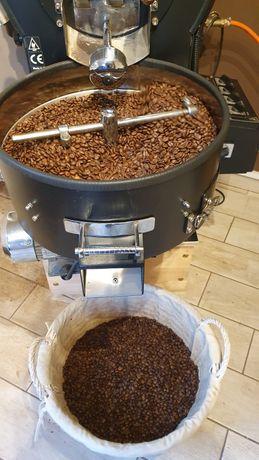 Szkolenie Palarnia Kawy