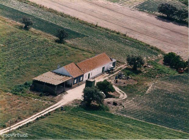 Terreno c/36575 m2 c/construções e furo artesiano