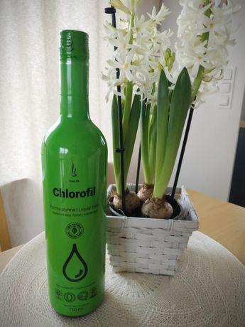 Chlorofil, płynna energia