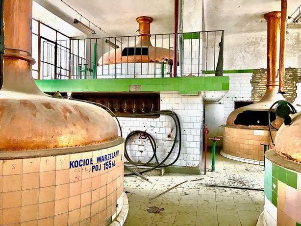 Browar przemysłowy, produkcja, piwo, wynajem