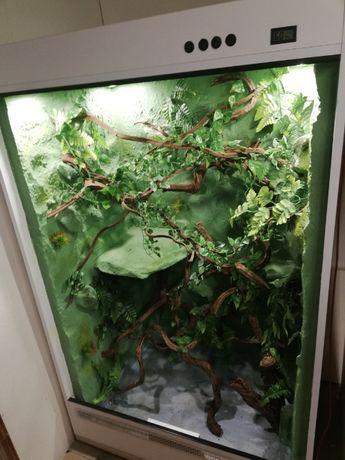 Terrarium dla Kameleona, duże 100x70x160