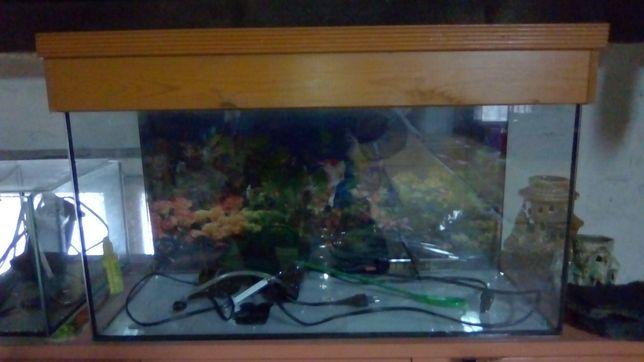 Sprzedam akwarium 50l z oświetleniem grzałką i filtrem