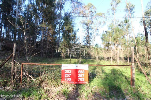 Carreiras S. Miguel-Vila Verde (Terras De Penegate)