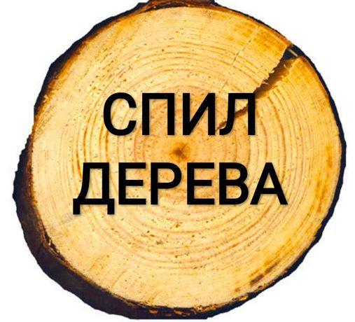 Спил и распил деревьев