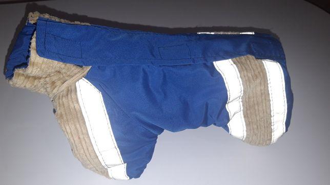 Одежда для мелких пород собак