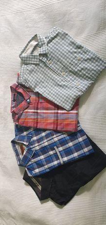 Paczka męskich koszul
