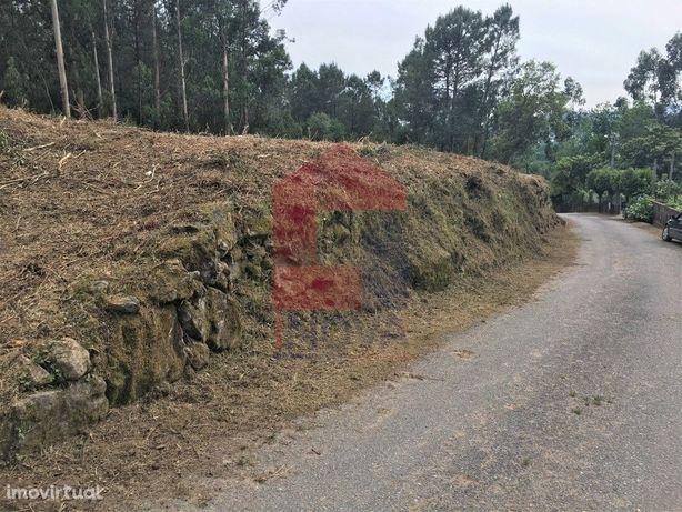 Terreno no Pico, Vila Verde