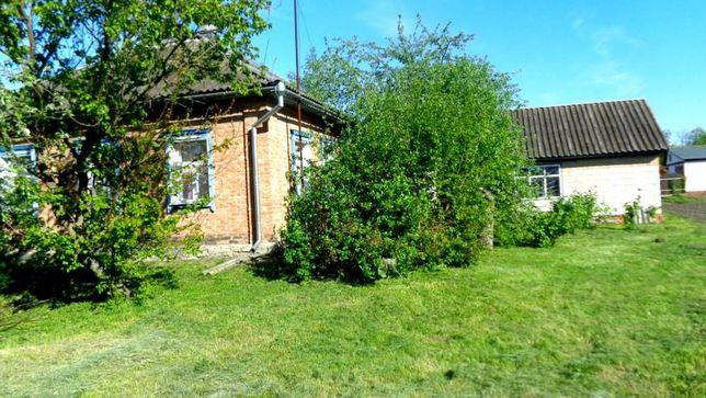 Продам будинок в селі Великі Сорочинці