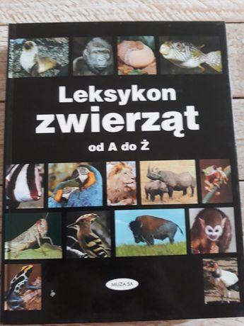 Leksykon zwierząt od a do ż. Album ponad 550 stron