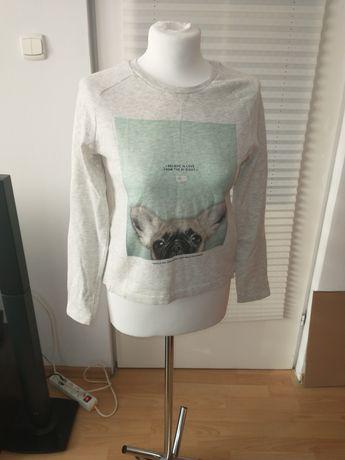 Ciepła dziewczęca bluza 152/146