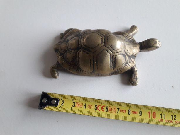 Figurka żółwia mosiądz