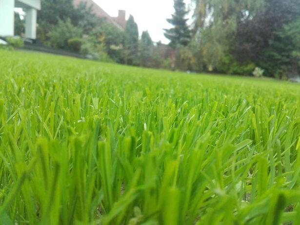 Zakładanie trawników. Usługi glebogryzarką separacyjną i tradycyjną.