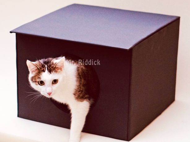 Budka dla kota na dwór KOMFORT miękka w środku i ocieplana