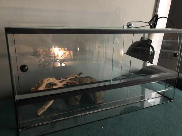 Terrarium idealne dla gekona lamparciego