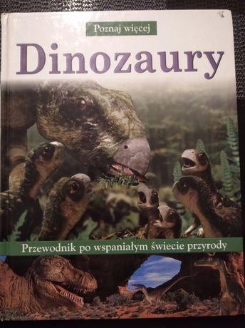 Książki o dinozaurach 2 szt