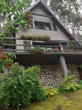 Wynajmę dom nad jeziorem Borówno Wielkie k/Skarszew