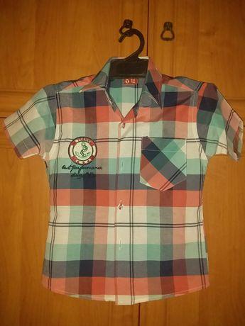 Теніска, футболка, рубашка