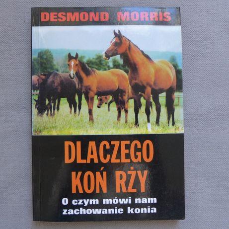 D. Morris DLACZEGO KOŃ RŻY jazda konna jeździectwo konie