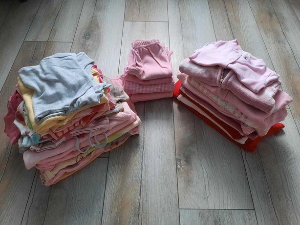 Mega Paka 56 62 body spodnie legginsy sweterki ubrania dla dziewczynki