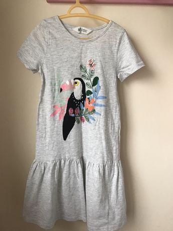 Sukienka HM 122/128 szara papuga