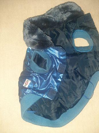 Гламурная курточка  с меховым воротником  для йорка  и чихуашки