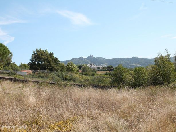 Terreno urbano 5002m2 em Sintra entre o Mar e a Serra