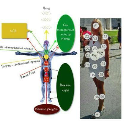 Сеанс работы с телом на уровне психосоматики метод Маракато