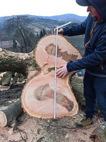 Plastry drewna jesion piękny unikatowy na meble