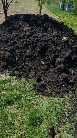 Torf humus ziemia czarnoziem