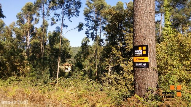 Terreno Misto  Venda em Fervença,Celorico de Basto