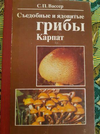 Съедобные и ядовитые грибы Карпат.