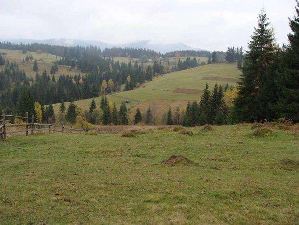 Продаю земельный участок в Ивано-Франковской области