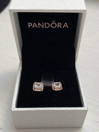 Kolczyki Pandora