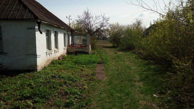 Продам дом с участком киевская область
