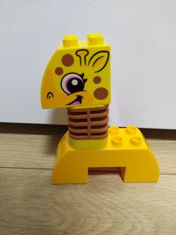 Лего дупло. Первые животные. Жираф