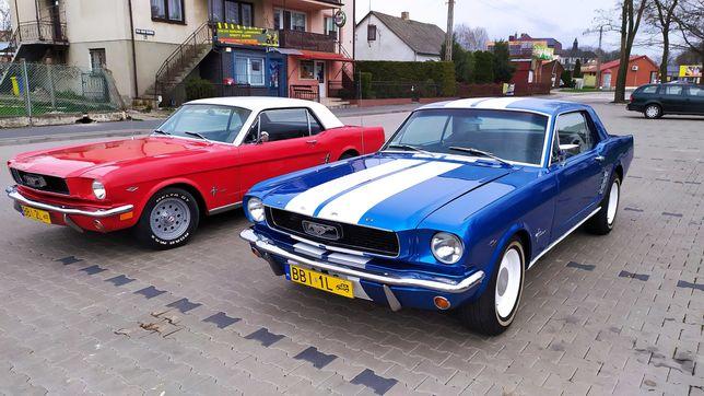 Mustangiem do slubu. Sam prowadzisz.