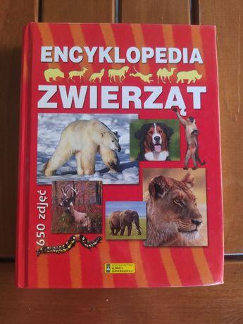 Encyklopedia zwierząt 650 zdjęć, wydawnictwo Elżbieta Jarmołkiewicz