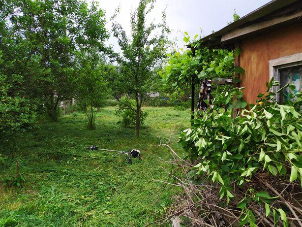 Дача (дачный участок) в Пряжево (садовое товарищество Труженик)