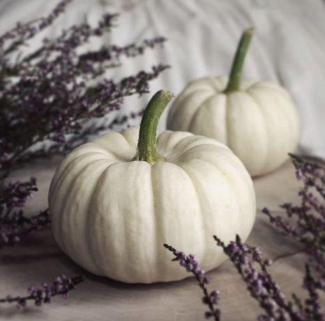 Baby boo dynia 4 szt dekoracyjna ozdoba halloween