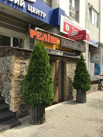 Продається кафе-кулінарія в центрі м.Івано-Франківська