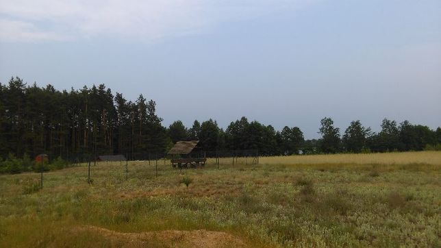Działka bud. 851m2 Bory Tuch, Stary Sumin, jeziora, lasy, spokój