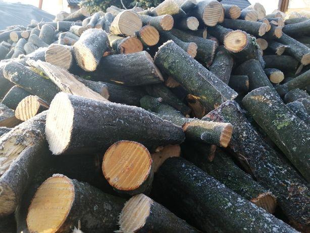 Drewno opałowe Super cena 110