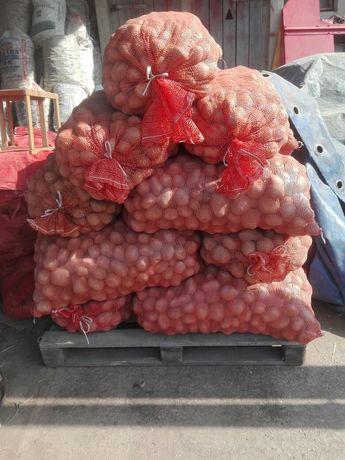 Sprzedam Kartofle, ziemniaki jadalne