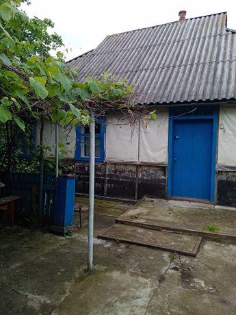 Продається будинок у селі Дибинці