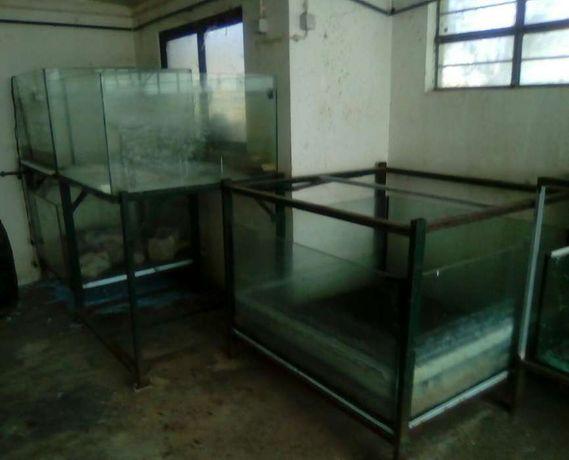 Tanques de criação de peixes/aquários